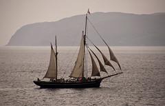 Oban sailing ship (chris-parker) Tags: mull iona scotland beach rocks sand yacht sunset sea pinks seaweed sailing ship traigh ban boat rockpool puppy cal mac caledonian macbrayne