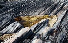 Mull rockpool (chris-parker) Tags: mull iona scotland beach rocks sand yacht sunset sea pinks seaweed sailing ship traigh ban boat rockpool puppy cal mac caledonian macbrayne