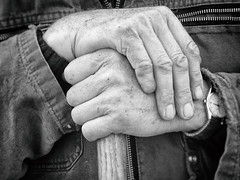Hands (Stefan Witte) Tags: hands worker farmer agriculture
