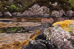 Mull landscape 2019 20 (chris-parker) Tags: mull iona scotland beach rocks sand yacht sunset sea pinks seaweed sailing ship traigh ban boat rockpool puppy cal mac caledonian macbrayne