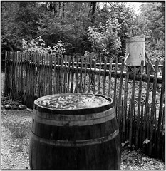 Rainwater for the garden_Rolleiflex 2.8E (ksadjina) Tags: 5min 6x6 austria carlzeissplanar80mmf128 freilichtmuseum grosgmain kodak400tmax nikonsupercoolscan9000ed rodinal rolleiflex28e salzburg silverfast analog blackwhite film scan
