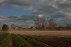 sandstorm (renatecamin) Tags: sand storm sandstorm wind stormy sandsturm sturm herbst autumn