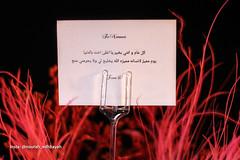 Love you my Brother (Nourah.A.Edhbayah (Super Flower♥إظبيه)) Tags: nourah abdullah edhbayah q q8 kuwait عبدالله اظبيه الكويت