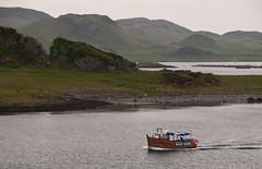 Boat nr Oban (chris-parker) Tags: mull iona scotland beach rocks sand yacht sunset sea pinks seaweed sailing ship traigh ban boat rockpool puppy cal mac caledonian macbrayne
