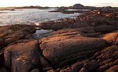 Fidden scene 4 (chris-parker) Tags: mull iona scotland beach rocks sand yacht sunset sea pinks seaweed sailing ship traigh ban boat rockpool puppy cal mac caledonian macbrayne