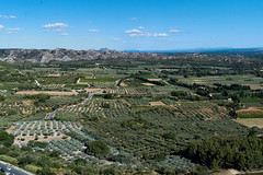 Olive Trees, Vineyards, and Hills from the Chateau at Les Baux de Provence (BlueVoter - thanks for 2.6M views) Tags: lesbaux provence olivier vin collines hills