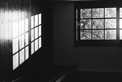 The light. (蒼白的路易斯) Tags: taipei taiwan 北投溫泉博物館 北投 kodakdoublex5222 yashicaelectro35gsn 底片攝影 底片