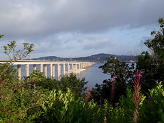 Photo of River Tay Road Bridge looking North to Dundee