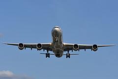 G-VEIL Airbus A340-642 EGLL 20-08-19 (MarkP51) Tags: gveil airbus a340642 a340 virginatlantic vs vir london heathrow airport lhr egll england airliner aircraft airplane plane image markp51 nikon d7200 nikonafp70300fx