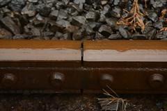 Expansion Gap (Clint__Budd) Tags: 119picturesin2019 anarrowgap rails railway gwilirailway gwili