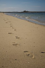 Walk In The Sun (4oClock) Tags: islesofscilly scilly cornwall kernow nikon d90 2018 summer paradise suchofcornwall island islandlive england uk britain tresco beach sand