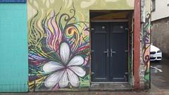 Street Art, Inverness, July 2019 (allanmaciver) Tags: street art inverness highlands capital door colours flower allanmaciver
