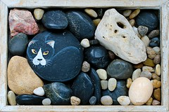 ROCK || KEIEN & BROKKEN (Anne-Miek Bibbe) Tags: rock nederland rotsen rots keien bibbe annemiekbibbe canoneos70d steenbrokken happpysmileonsaturday cats cat katten kat chat painted gato katze gatto poes steen 2019 tabletopphotography rockbeschilderde