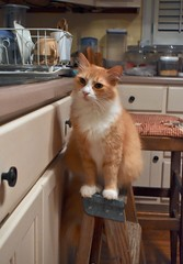 """Are you going to be a long time, washing those dishes?"" (rootcrop54) Tags: jimmy orange ginger tabby male cat stepladder kitchen company latenightcompany neko macska kedi 猫 kočka kissa γάτα köttur kucing gatto 고양이 kaķis katė katt katze katzen kot кошка mačka gatos kotek мачка maček kitteh chat ネコ"