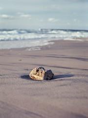 At the beach (Geir Bakken) Tags: yashica yashica44 analog analogue analogphotography vintagecamera beach water sea stone rock film filmisnotdead filmphotography filmcamera kodak ektar hirtshals denmark 135film 135 tlr