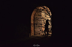At the door of the unknown (Marco Montrasio - Art) Tags: door shadows nature castle