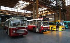 Brabantse veteranen (1) (Maurits van den Toorn) Tags: bus autobus omnibus streekbus daf volvo ford classictransport bba brabant werkspoor utrecht sva zabo denoudsten