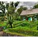Church Hill IR - Glenveagh Castle garden 03