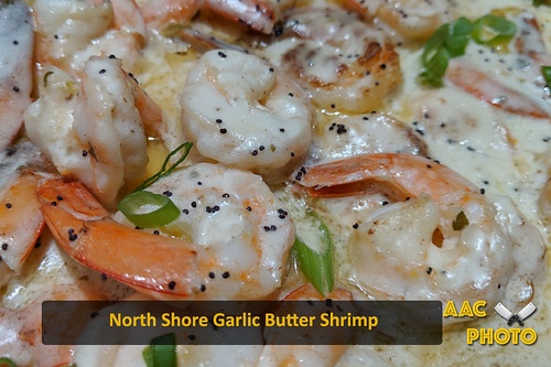 """North Shore Garlic Butter SHrimp • <a style=""""font-size:0.8em;"""" href=""""http://www.flickr.com/photos/159796538@N03/48602510451/"""" target=""""_blank"""">View on Flickr</a>"""