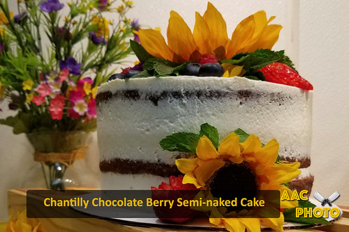 "Chantilly Berry Chocolate Cake • <a style=""font-size:0.8em;"" href=""http://www.flickr.com/photos/159796538@N03/48602511156/"" target=""_blank"">View on Flickr</a>"