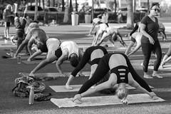 """Street Yoga"" (Sal Sciarrino) Tags: street streetphotography yoga bw blackandwhite nikond600 85mm city florida"