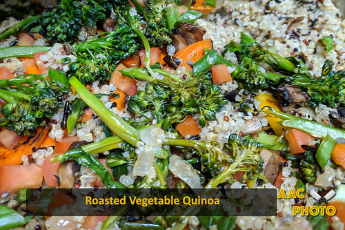 "Roasted Veggie Quinoa • <a style=""font-size:0.8em;"" href=""http://www.flickr.com/photos/159796538@N03/48602646272/"" target=""_blank"">View on Flickr</a>"