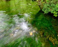 Kamikochi,clear stream (shinichiro*) Tags: 松本市 長野県 日本 20190706dsc8517 2019 crazyshin nikonz6 z6 nikkorz2470mmf4s july summer kamikochi nagano japan jp autoisospeedupper3200 notripod handheldphotography candidate 48602710066