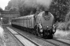 60009 - Union of South Africa (Signal Box - Railway photography) Tags: outdoor railway railroad mainline steam locomotive engine train steamtrain ukrailway hampshire whitchurch 60009 unionofsouthafrica a4 pacific class lner monochrome dorsetcoastexpress