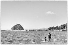 Explorations (lorinleecary) Tags: mother beach morrorock monochrome water trees child boats blackandwhite windycove morrobay