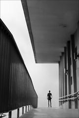 F_MG_4528-1-Canon 6DII-Tamron 28-300mm-May Lee 廖藹淳 (May-margy) Tags: maymargy bw 黑白 人像 背影 逆光 剪影 走道 hallway hand rail building wall humaningeometry humanelement streetviewphotography linesformandlightandshadow mylensandmyimagination naturalcoincidencethrumylens taiwanphotographer 台南市 台灣 中華民國 扶手 建築物 幾何構圖 點人 街拍 線條造型與光影 天馬行空鏡頭的異想世界 心象意象與影像 fmg45281 portrait viewfromback backlighting silhouette corridor 台灣攝影師 taiwan tainancity repofchina canon6dii tamron28300mm maylee廖藹淳