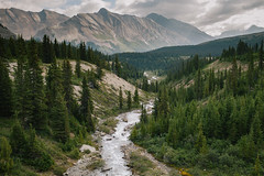 Icefields Parkway. (Kyle D Adams) Tags: canada canadian rockies icefields parkway jasper national park parks canon eos 5dmkii 5d2 5d mark ii ef 35mm f14l 35l mountains river landscape pine trees outdoors nature explore mountainscape