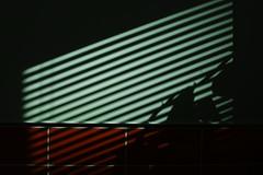 Blind Shadow (Indigo Skies Photography) Tags: foveon foveonmagic foveonx3directimagesensorcmos foveonsensor sigma sigmasdquattro quattro sigma30mmf18 light shadow blind kitchen dof reflection