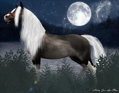 ✎ Art Piece N*1 ✎ (~WildHorse~ Owner) Tags: secondlife horse bento avatar teegle photo drawing photoshop manipulation
