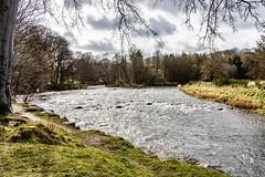 River Don (georgehart64) Tags: seatonpark riverdon canoneosr canon scotland
