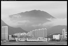 _3500244 copy (mingthein) Tags: thein onn ming photohorologer bw blackandwhite monochrome
