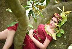 koren magnolia rest (glasskunstler) Tags: tree magnolia series fairy flowers restingplace