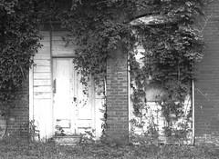 Amnesia (oldoinyo) Tags: architecture disused abandoned door window overgrown northcarolina