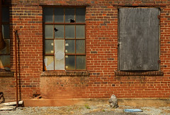'Bama back alley (radargeek) Tags: al alabama athens 2019 august brick rust downtown townsquare