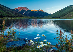 Crystal Lake and daisies (allagill) Tags: lake reflection daisies wildflowers sunrise landscape colorado mountains ngc