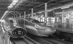 Two faces (odeleapple) Tags: leica llla canon 50mm yellowfilter kodaktmax400 film monochrome analog bw train railroad platform shinkansen