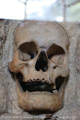 Skull Tower 1 (srkirad) Tags: skull human skulltower niš naisus serbia srbija memorial monument history wall embeded horror