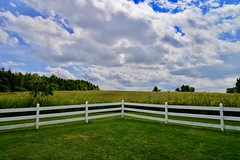 LeRoy Oakes - Kane County Forest Preserve - Saint Charles IL (Meridith112) Tags: fence fencefriday happyfencefriday clouds cloud bluesky sky prairie preserve leroyoakesforestpreserve kanecounty kanecountyforestpreserve il illinois tree trees summer august 2019 nikon nikon2485 nikond610 saintcharles leroyoaks