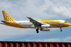 Scoot - Airbus A320-232 / 9V-TRV @ Manila (Miguel Cenon) Tags: scoot scoota320 tgwa320 rpll airplanespotting airplane apegroup appgroup airport airbus aircraft planespotting ppsg philippines plane airbusa320 a320 manila nikon naia narrowbody d3300 twinengine aviation wings wing window 9vtrv wheel winglet