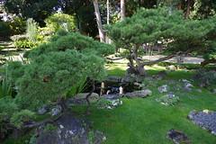 Garten, Schloss Schönbrunn, Wien (AWe63) Tags: schönbrunn schloss schlosspark park wien österreich pentax pentaxk1mkii cawe63