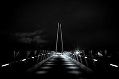 Travel (Stu Thatcher) Tags: stu stuart thatcher bridge canon 5d mk4 black white bw worcester uk worcestershire night