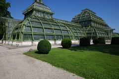 Palmenhaus, Schloss Schönbrunn, Wien (AWe63) Tags: palmenhaus schönbrunn schloss schlosspark park wien österreich pentax pentaxk1mkii cawe63