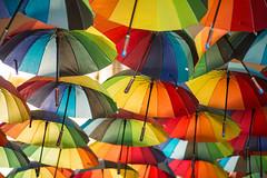 Colours In The Sky (TablinumCarlson) Tags: europa europe eu rumänien romania bukarest bucharest bucurești walachei wallachia architecture architektur leica summicron cron m schirm umbrella regenschirm farben colours colour color 90mm passage brolly dof