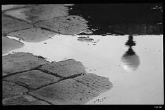 IMG_4688 (anto-logic) Tags: reflection lamp rain reflex streetlight pavement pioggia lampione riflesso selciato street blackandwhite bw walking boats outdoors freedom focus strada pov walk free barche bn depthoffield pointofview mooring lovely toscana oldtown livorno aria biancoenero libero domenica aperta streetshot bello centrostorico passeggiata fossi lavenezia profonditàdicampo puntodivista scali ormeggi lbertà pentagonodelbuontalenti lighting photoshop canon relax effects eos nice perfect pretty skin bokeh gorgeous naturallight filter crop charming relaxed postproduction lightroom effetti filtro alienskin postproduzione