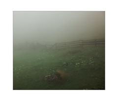 NoThing is separated (Thomas Listl) Tags: thomaslistl color fence hff mood fog field schweiz schweizeralpen swiss graubünden green grass nature wood lines atmosphere rainy gloomy ngc switzerland