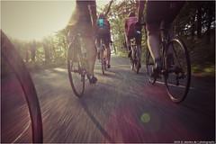 _racefietsflow (l--o-o--kin thru) Tags: benulicyclingde training